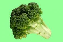 Brokolice chrání proti rakovině
